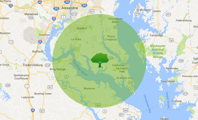 Jeff's Tree & Outdoor Services - Contact Service Map